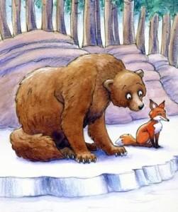 Bear-and-fox-proactive