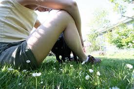 dandelion-weeds